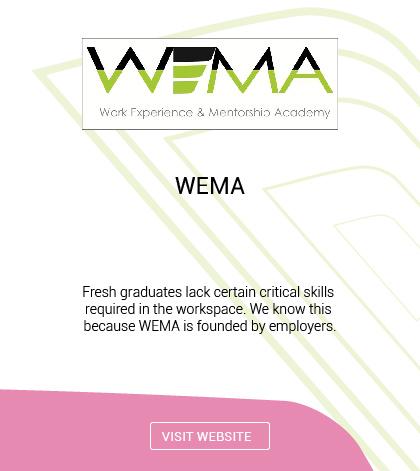 Work Experience & Mentorship Academy (WEMA)